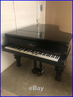 1884 Steinway Model B grand piano for sale with a black case on Victorian Legs