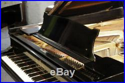 A 1902, Steinway Model B grand piano with a black case. 3 year warranty