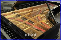 Antique, 1912, Bechstein Model E grand piano with a black case. 3 year warranty