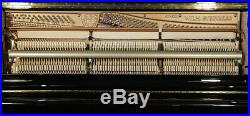 New Wilh Steinberg Model AT-K30 upright piano with a black case. 5 year warranty